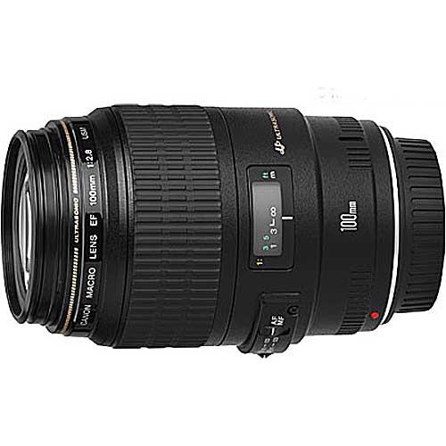 купить Canon EF 100 f/2.8 Macro USM онлайн